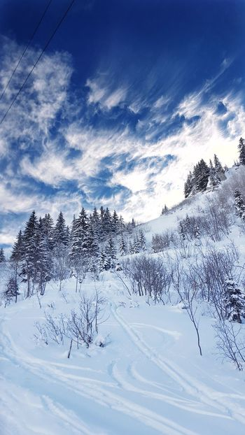 Sky Cloud - Sky Tree No People Outdoors Winter Winter Wonderland Ski Le Grand Bornand Holidays ☀ France EyeEm Best Shots Eye4photography  Good Times