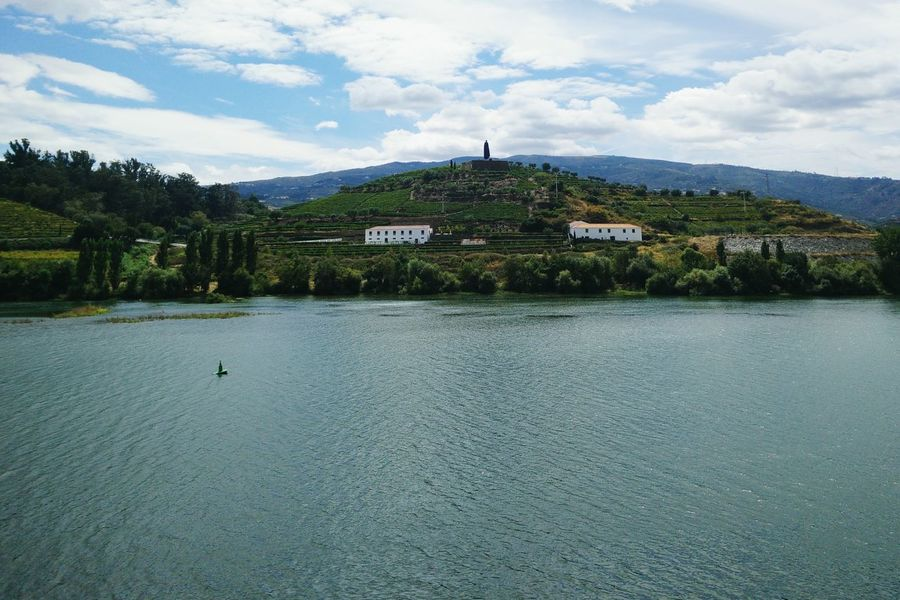 Sandeman River Douro  Landscape Taking Photos