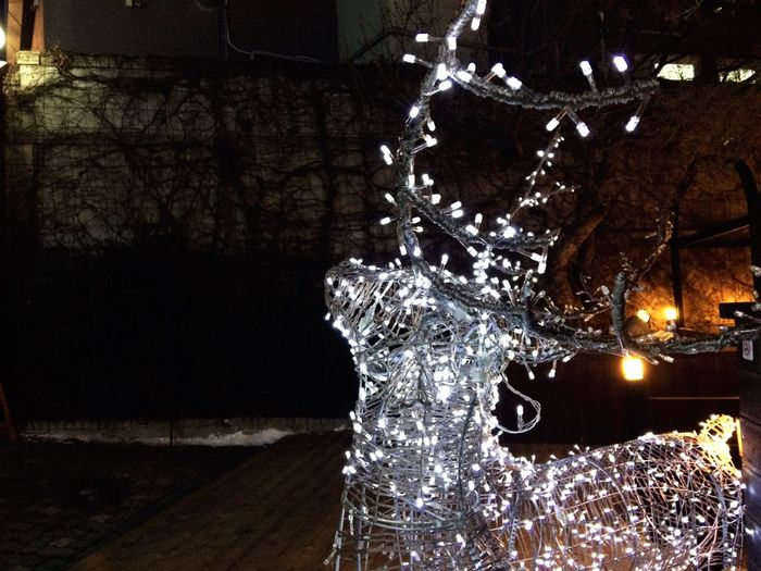 Deer Light Festive Season Cityscapes RePicture Giving