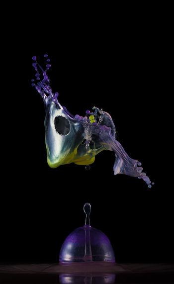 See more on my Website: http://www.liquid-artist.de Artist Drops Liquid Wassertropfen Abstract Black Background Drop Droplet Flüssigkeiten Highspeed Kunst Purple Splashing Still Life Tropfen Wasser Water Water Collection  Water Collection  Waterdrop Waterdroplet