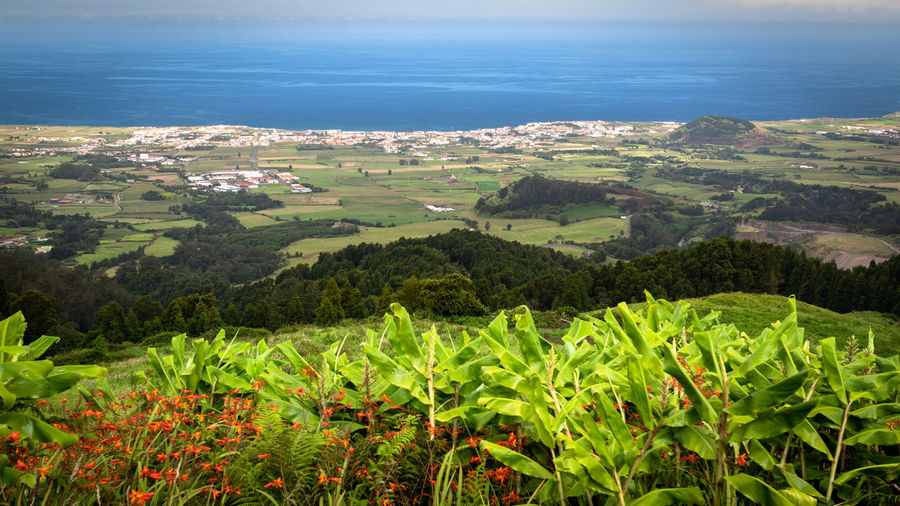 Scenic view of agricultural field by sea against sky