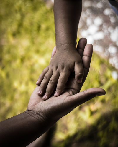 Cropped hands of child with parent