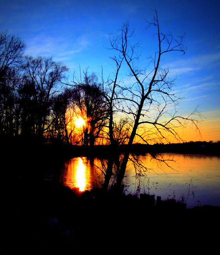 Sunset at a Bavarian Lake in Winter Bavaria Bill Ryker EyeEm Nature Lover MA Eibl Winter Awe Bare Tree Beauty In Nature Eye4photography  Idyllic Lake Majestic Nature No People Outdoors Reflection Scenics Silhouette Sky Sunset Tranquil Scene Tranquility Travel Destinations Tree Water