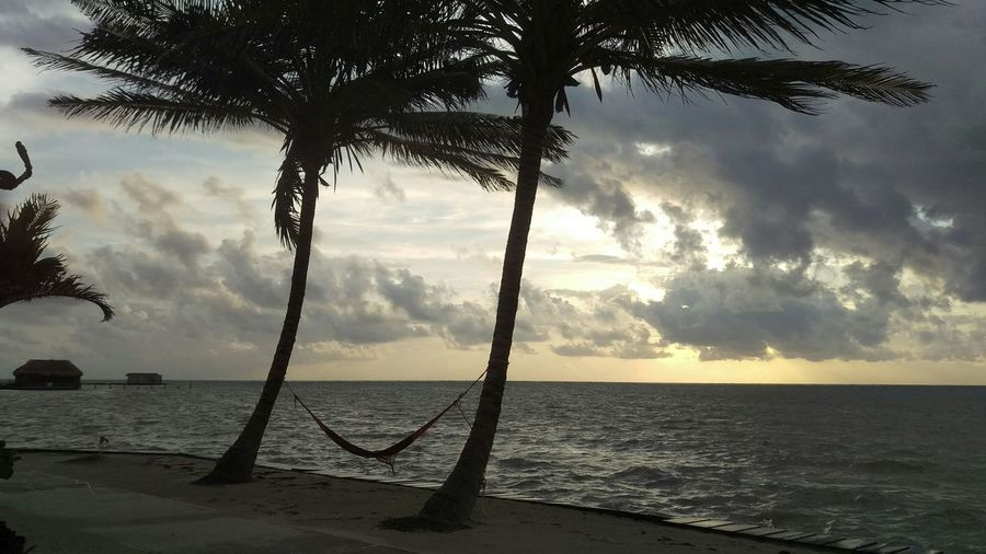 My Best Photo 2015 siloutte of coconut palms with hammock at sunset,