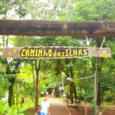 """""""Caminho das Ilhas""""... """"Camino de las Islas""""...""""Path of the Islands""""... Tree Text Day Outdoors Nature"""