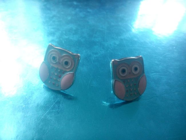 Earrings-nails Owls My Collection