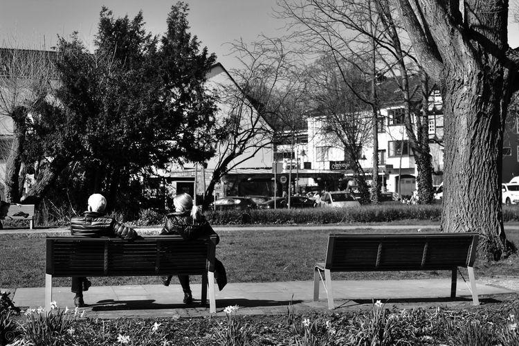 Canon Canonphotography Canon_photos Canon Eos  Canon 18-55 Bw Black And White Blackandwhite Streetphotography Street Photography B/W Photography B/w Tree Sky Park Bench Park