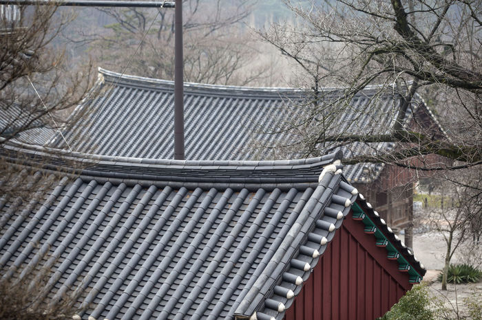 Absence Architecture Brick Wall Buddhism Building Exterior Built Structure Day Exterior House Korean Traditional Architecture Leading Metal Modern No People Old Outdoors Pattern Repetition Roof Roof Tile Steps Structure Symmetry Tiled Roof  Wood