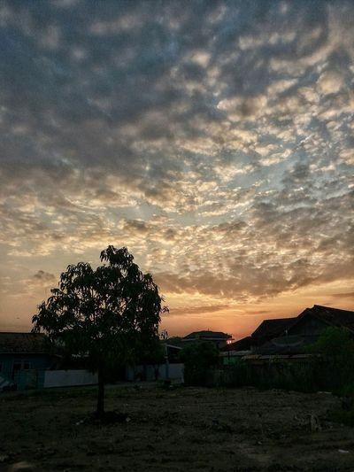 Sun Sunshine Sunshine ☀ sunset #sun #clouds #skylovers #sky #nature #beautifulinnature #naturalbeauty sunset #sun #clouds #skylovers #sky #nature #beautifulinnature #naturalbeauty photography landscape Sun_collection