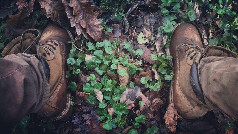 Walking Alone... Forest Forestwalk Boots Green And Brown Blinding EyeEm Gallery Eye4photography  Eyemphotos