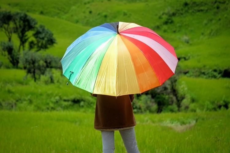 Rainbow Umbrella Rainbow Umbrella Nature's Diversities Feel The Journey Colour Of Life People And Places
