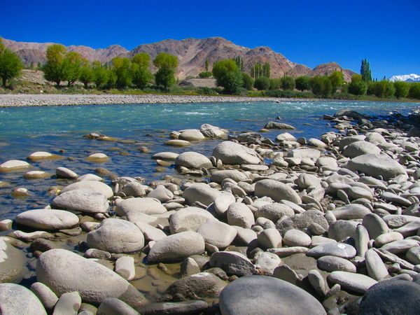 Day Forest Himalaya Himalayas Indus River Ladakh Leh Nature No People Outdoors Relaxing Moments River Stakna Monastery Stone Stream Summer Tranquil Scene Tree Vacation Voyage Water