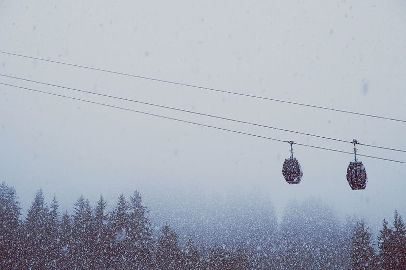 It's Cold Outside The Diagonal Winter Snow Snowing Flakes Snow Flakes Winter Trees Trees Trees And Sky Colors Cold Winter ❄⛄ Diagonal Lines Cable Car Cablecar Sky Open Edit Minimalism Minimal Minimalobsession Simplicity Blurred Fog Foggy Weather The Great Outdoors - 2016 EyeEm Awards