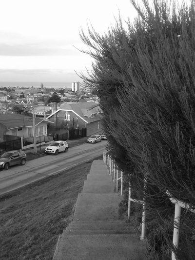 Mirador ó City