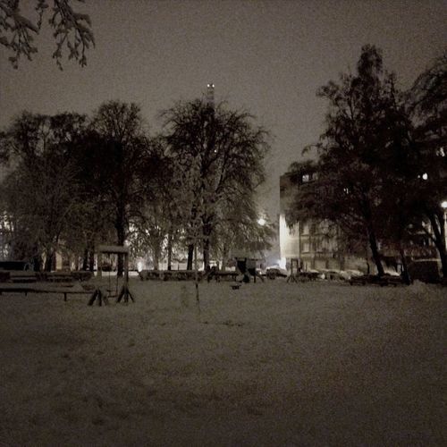 Snow January Throwback Dark