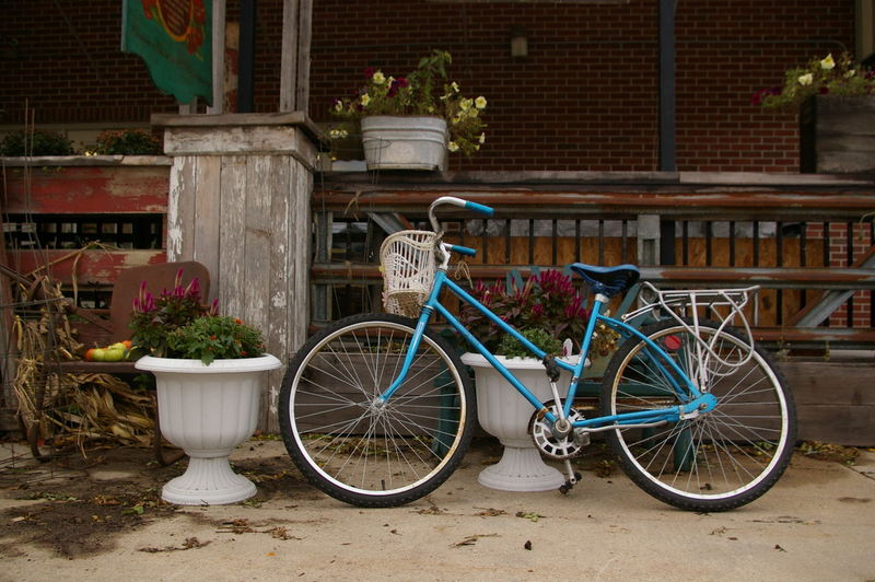 Bicycle parked by potted plant against building