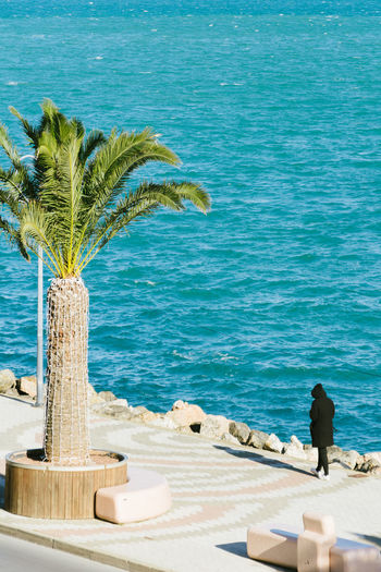 Reach without me Beach Blue Day Horizon Over Water Nature One Person Outdoors Palm Tree People Real People Sea Sky Tree Water