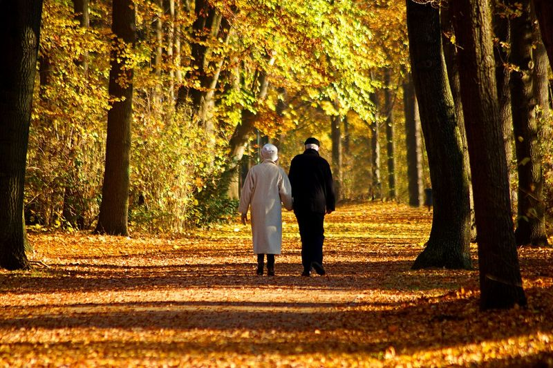 Rear View Of Senior Couple Walking In Park During Autumn