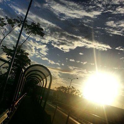 Sunshine Mornin
