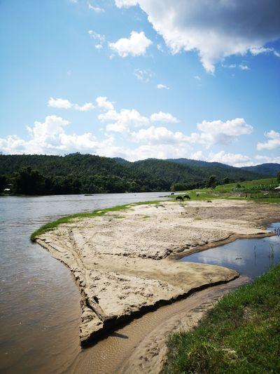 Delta Riverbank