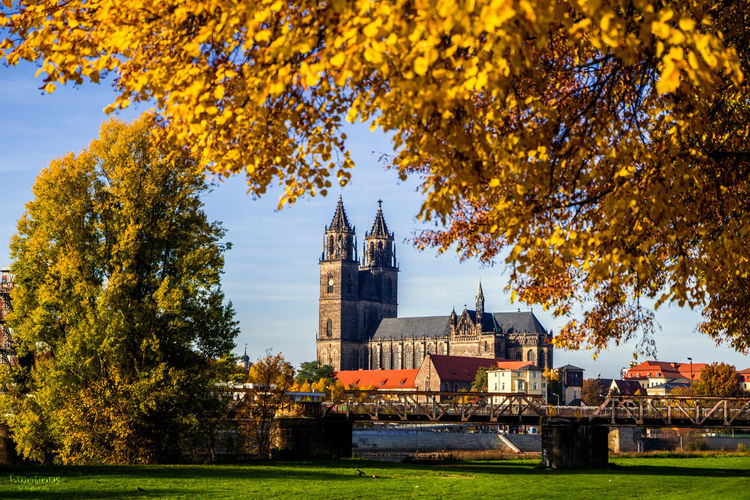 Magdeburg cathedral in city during autumn