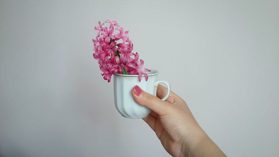 Close-Up Of Hand Holding Flowers In Cup