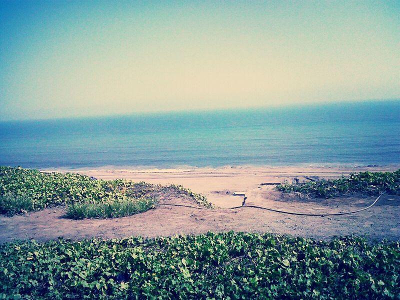 Summer #beach Enjoying Nature