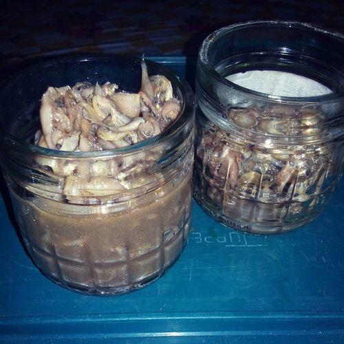 Balawis Fish Paste from Badian, Cebu. SALAMAT kaayo sa balawis/danggit nga ginamos (pm ra ko para secret) ;-) Danggit  Balawis Ginamos Fishpaste badian cebu delicacy
