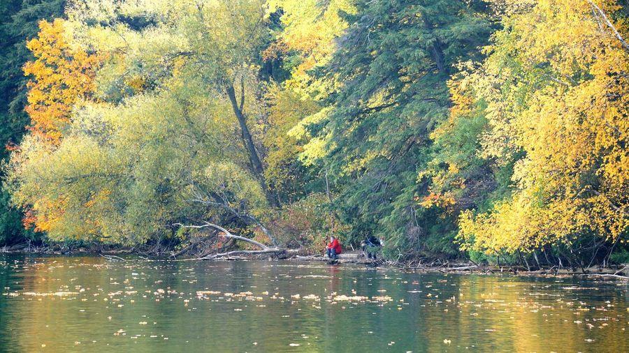 Bond Lake Water