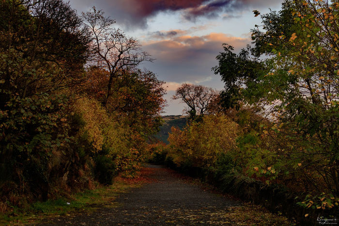 Calton Hill path Edinburgh Arthurs Seat Autumn Autumn Colors Beauty Beauty In Nature Breathtaking Calton Hill Cloud - Sky Day Edinburgh Lovely Nature No People Outdoors Sky Tree