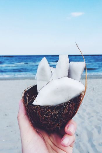 Cropped image of hand holding coconut at beach