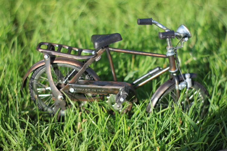 Miniatur Bicycle Aceh Grass Plant Green Color Transportation Land Day Nature Field No People Mode Of Transportation Land Vehicle Growth Outdoors Selective Focus Bicycle Stationary Wheel Metal Single Object Landscape