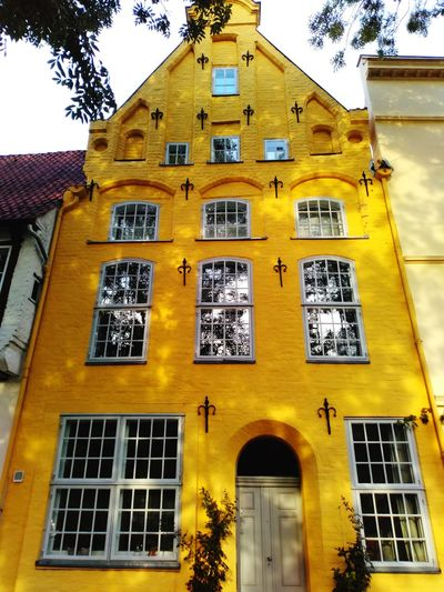yellow old building Old Buildings Old Town Yellow Facade Sunny Shadows Outdoors Lübeck Schleswig-Holstein Germany ARTfoxHH Yellow Window Façade Architecture Sky Building Exterior Built Structure Townhouse TOWNSCAPE