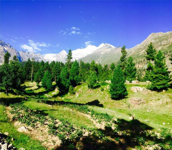 The Beauty of Pakistan! Gilgit Gilgit-Baltistan Green Hunza Valley Pakistan Nature New New On Eyeem Pakistan Traveling Beauty In Nature Day Environment Landscape Nature New On Eyem No People Outdoors Popular Photos Scenics - Nature Sky Tranquil Scene Travel Destinations