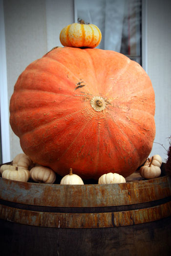 Autumn colours Autumn Day Food And Drink Freshness Gourd Halloween No People Orange Color Outdoors Pumpkin Vertical