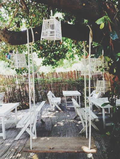 Fly me to the moon Cafe Chiang Mai | Thailand Having Lunch