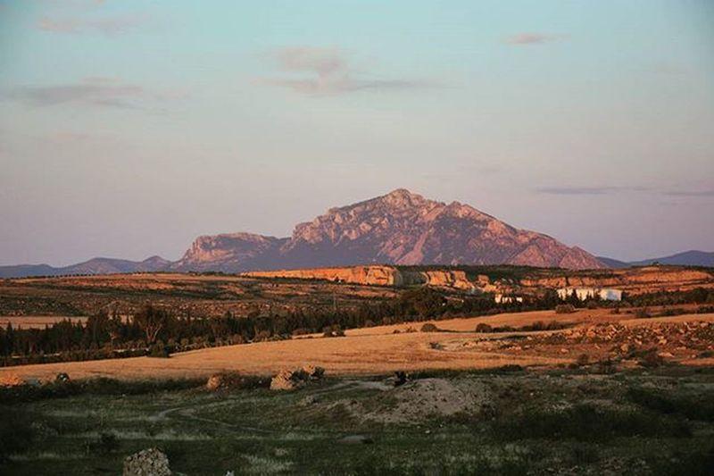 Tunisia IgersTunisia Wikilovesearth Mountain Nature Sunset الجبل الخجول ^_^ و على راي اﻷثر ... جبل الصباح مش كيما جبل لعشية :)