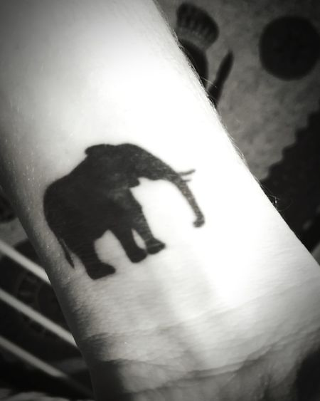 First Tattoo Wristtattoo Blackandwhite Elephant ♥ Tattoo Elephant Art Elephant Tattoo Tattoos Noir Black Tattoo Tattooedgirls Elephant Elephants Elefant Elephantlove Loveit Lifestyles Lifestyle Ink Inked Inkedgirls Wrist Shadow One Person People Young Adult Human Body Part Close-up Human Hand Animal Themes