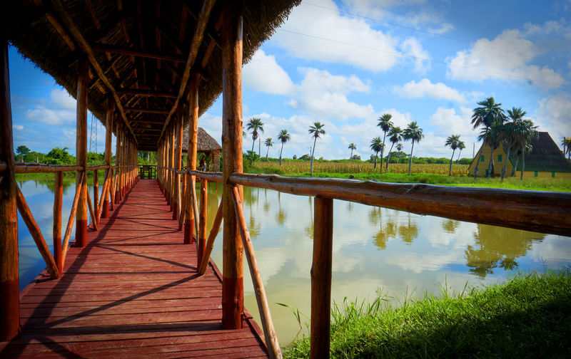 An oasis along one of Cuba's highways. Boardwalk Bridge Bridge - Man Made Structure Built Structure Cloud Cloud - Sky Connection Cuba Day Diminishing Perspective Footbridge Nature No People Outdoors Reflection Rest Area In Sky Tranquil Scene Tranquility Tree Vanishing Point Walkway Water Wood - Material Dramatic Angles