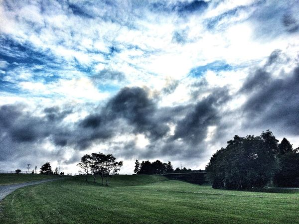 Summer - iPhone 5s Landscape Grass Clouds Sky Nature Park Trees Travel Explore Canada Hello World Scenery Scenic Summer Nature_collection Green Landscape_Collection