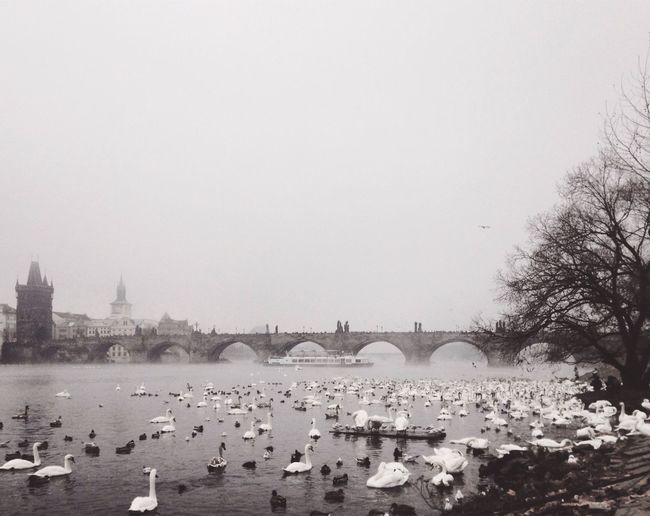 Great Atmosphere Taking Photos Peace And Quiet EyeEm Best Shots Tranquility AMPt_community Travel Destinations Prague