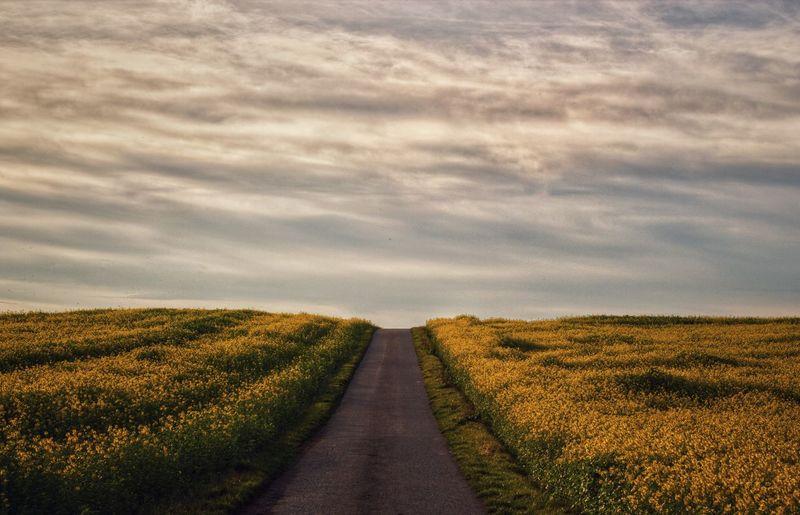 Dirt road passing through field against sky