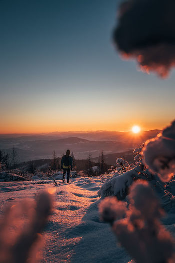 Watching the sunrise from behind spruce twigs in winter in beskydy mountains, czech republic