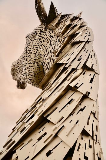 Animal Themes Animals In The Wild Bird Close-up Day Horse Photography  Low Angle View Mammal Mane Nature No People Outdoors Sky Steel Horses The Kelpies
