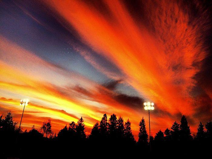 Training day Sky Hello World Orange Red Stadium Nature Sunset First Eyeem Photo