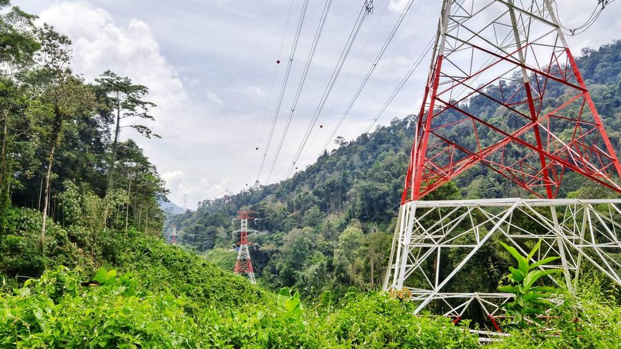 Electrical lines in the rural mountain area Electrical Line Transformer Rural Developement Cameron  Malaysia Green Urbanization Electricity Pylon Electricity  City Village Mountain Hill Layer vanishing point Vanishing Tree Mountain Greenhouse Net - Sports Equipment Sky Grass Green Color Rope Bridge