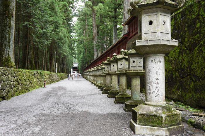 Futarasan Shrine of stone lantern Photo Photography StoneLantern Lantern Lanterns Futarasan Shrine Japan Tochigi Nikko