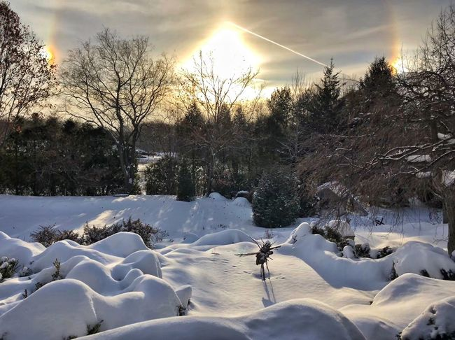 Sunset Triplerainbows Cold Temperature Winter Nature White Tranquil Scene Beauty In Nature Snow Scenics No People Tree Landscape