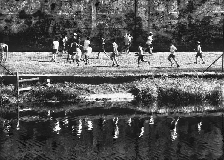 People playing on field by lake