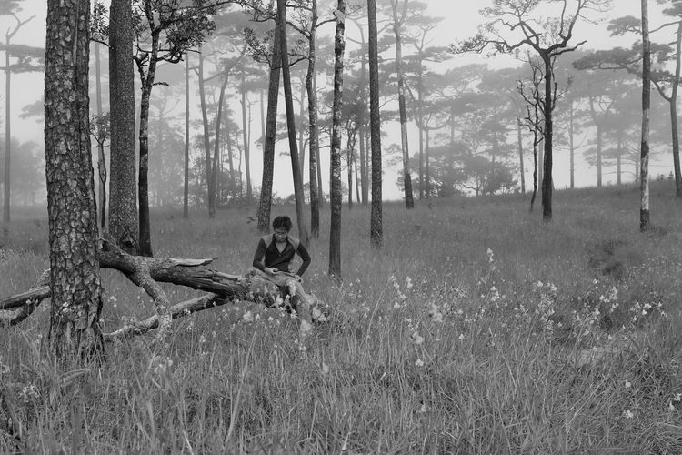 Man sitting on field by trees in forest